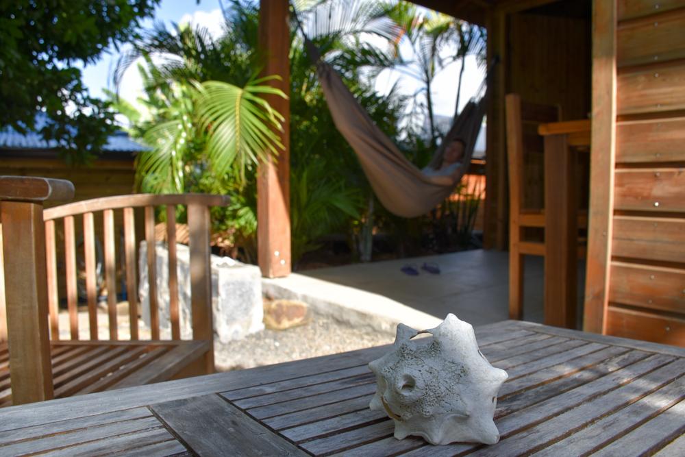Guadeloupe Sehenswürdigkeiten Highlights Reisetipps Iguana Ecolodge