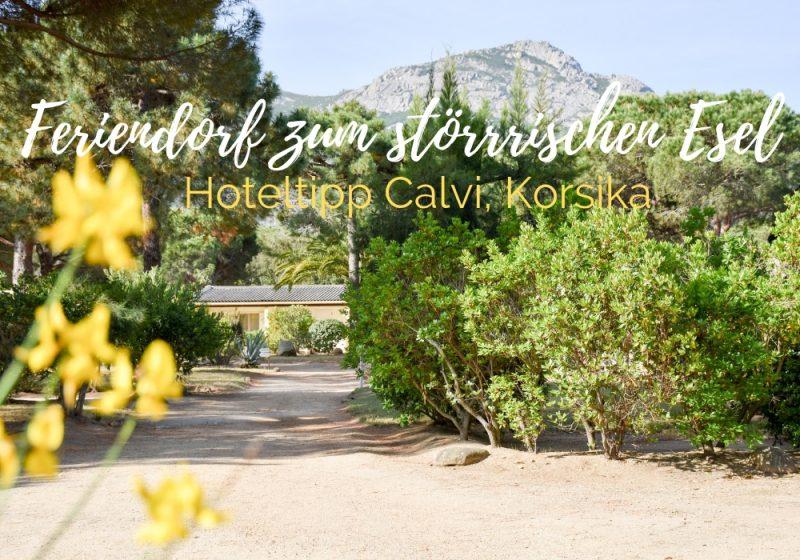 Hoteltipp Korsika Feriendorf zum störrischen Esel