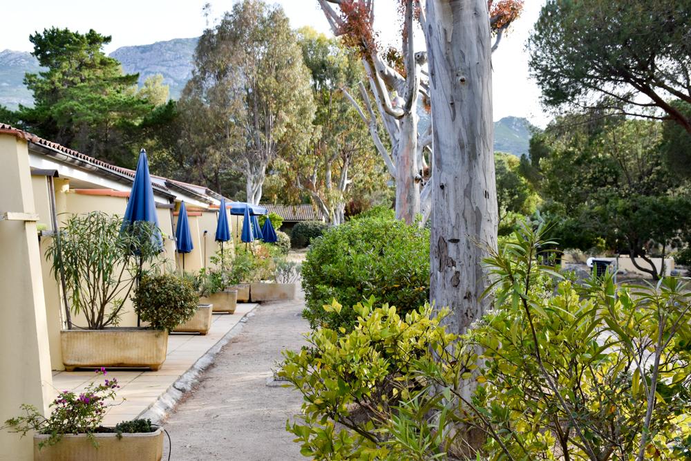 Hoteltipp Korsika Feriendorf zum störrischen Esel Calvi Bungalows und Gartenanlage