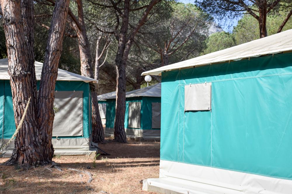 Hoteltipp Korsika Feriendorf zum störrischen Esel Calvi Unterhaltungsprogramm