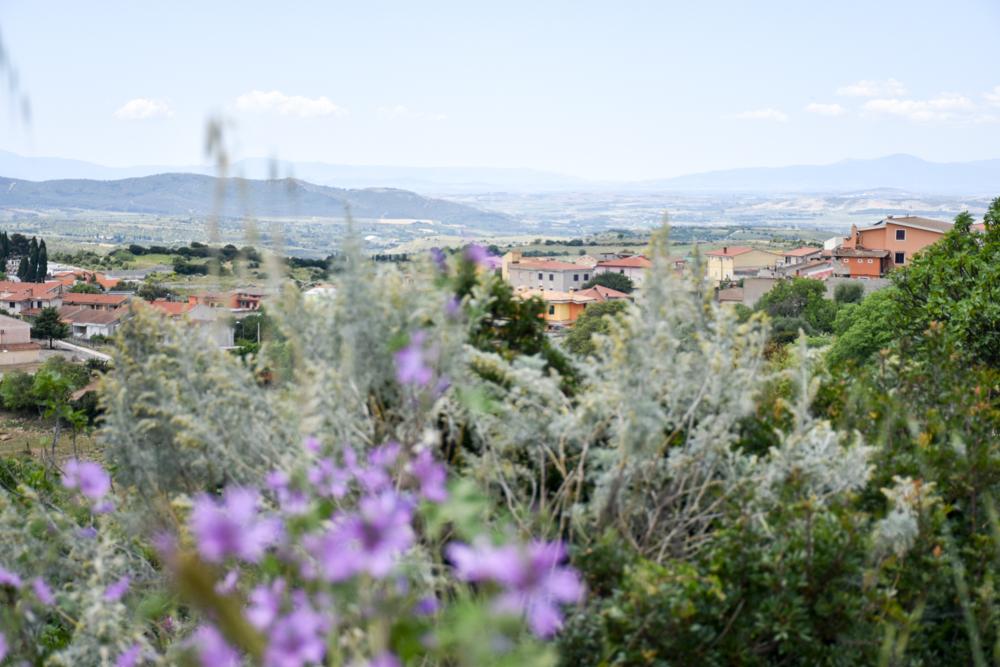 Sardinien Ostküste Reisetipps Highlights Restaurants Blick über das Inland
