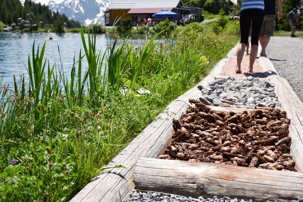 Familienausflug Engelberg Brunni Schweiz Kitzelpfad rund um den Härzlisee bei der Brunnihütte