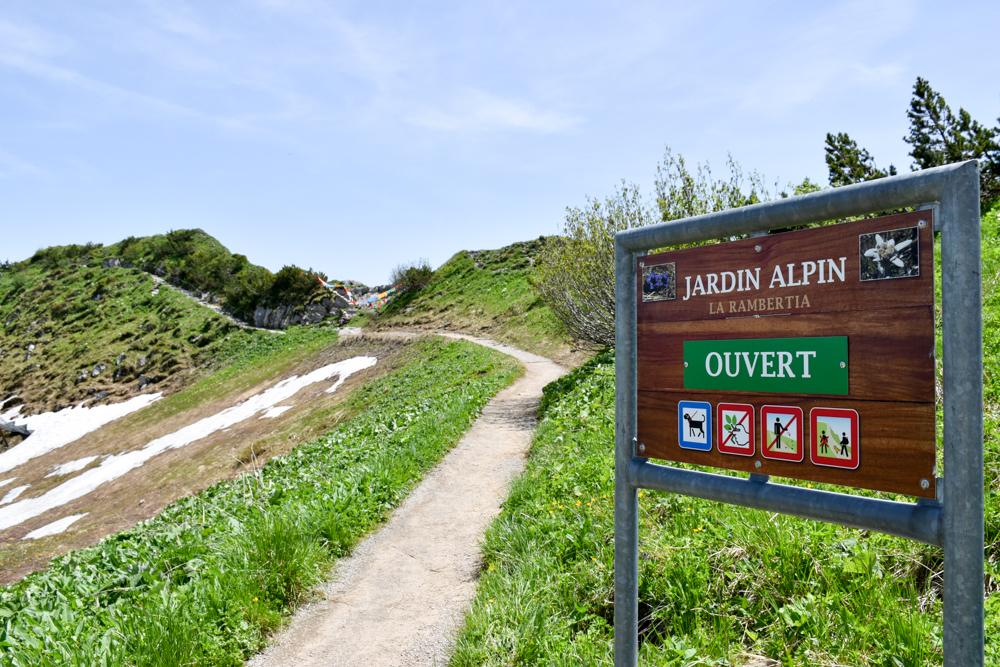 Familienausflug Rochers-de-Naye Montreux Schweiz Alpengarten Jardin Alpin