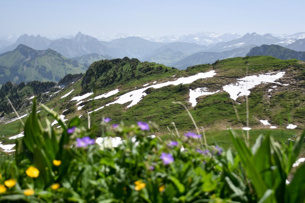 Familienausflug Rochers-de-Naye Montreux Schweiz Aussicht vom Rochers de Naye
