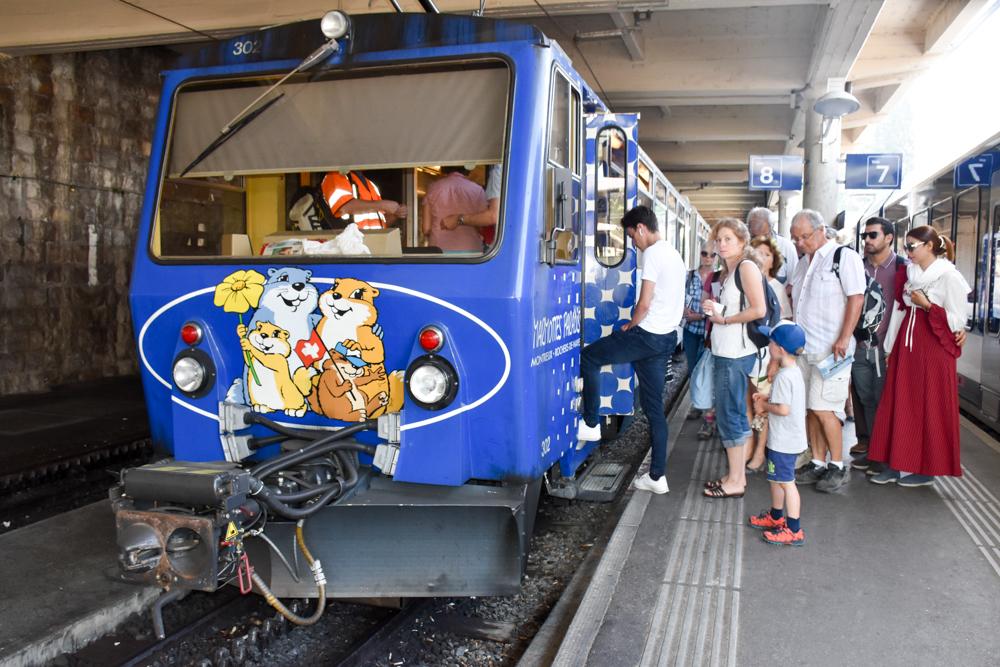 Familienausflug Rochers-de-Naye Montreux Schweiz Goldenpass mit Murmeltieren
