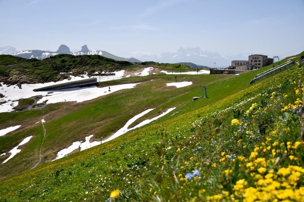Familienausflug Rochers-de-Naye Montreux Schweiz