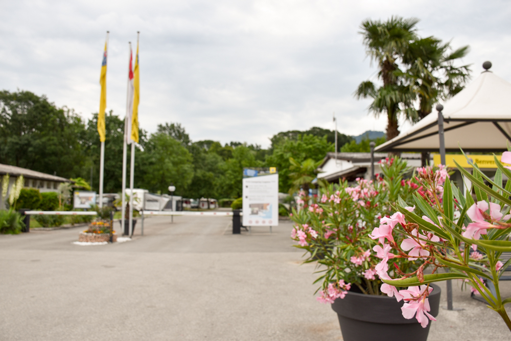Glamping Lugano Schweiz Safarizelt Deluxe TCS Campingplatz Eingang