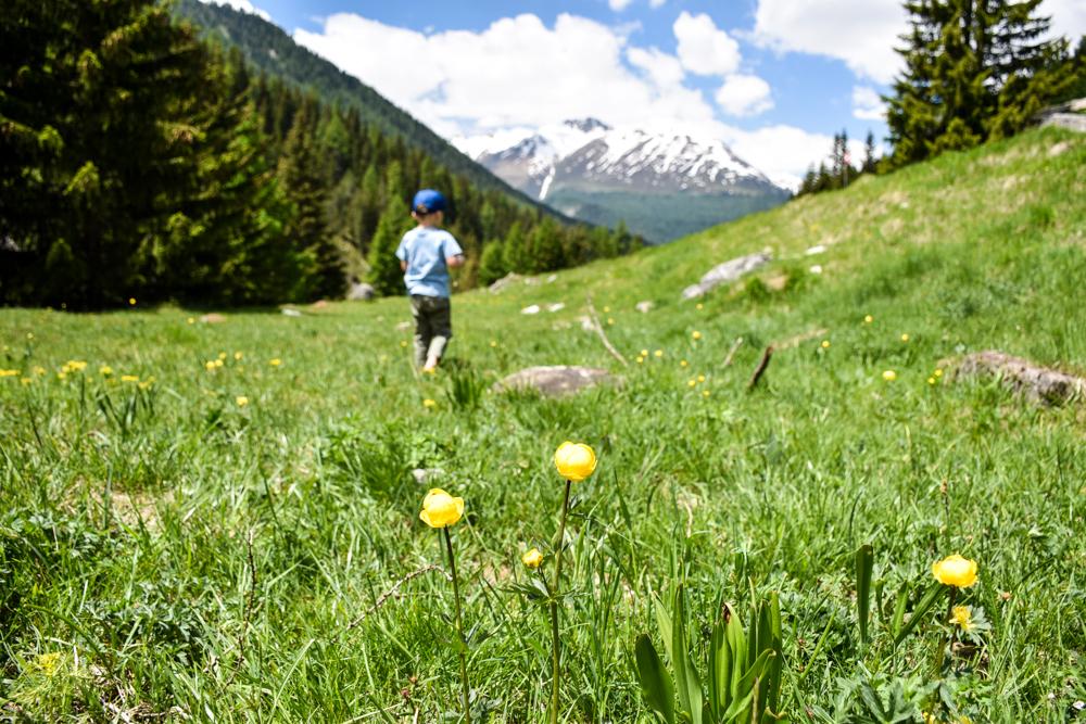 Unterkunft St. Moritz Engadin Schweizer Jugendherberge Val Trupchun