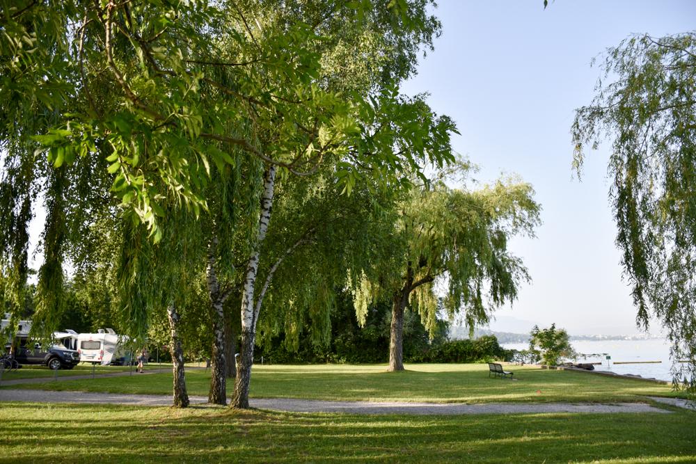 Biwak Glamping TCS Campingplatz Genf viel Gras und Bäume