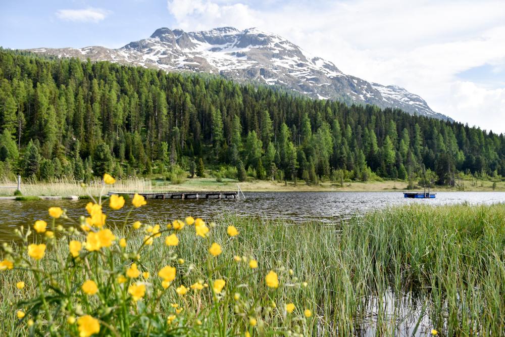 Engadin Graubünden Schweiz mit Kind Stazersee St. Moritz