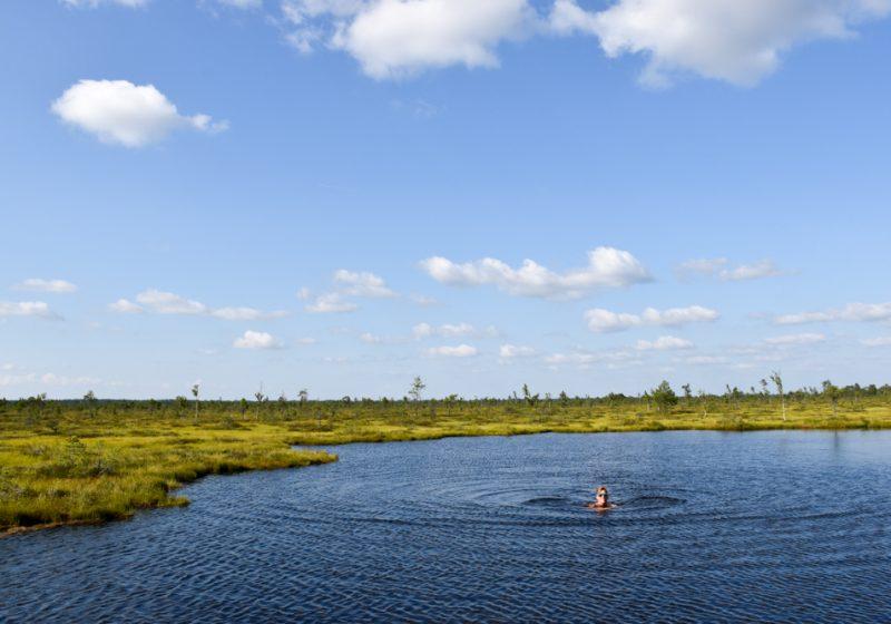 Estland Road Trip Reisetipps Route Highlights