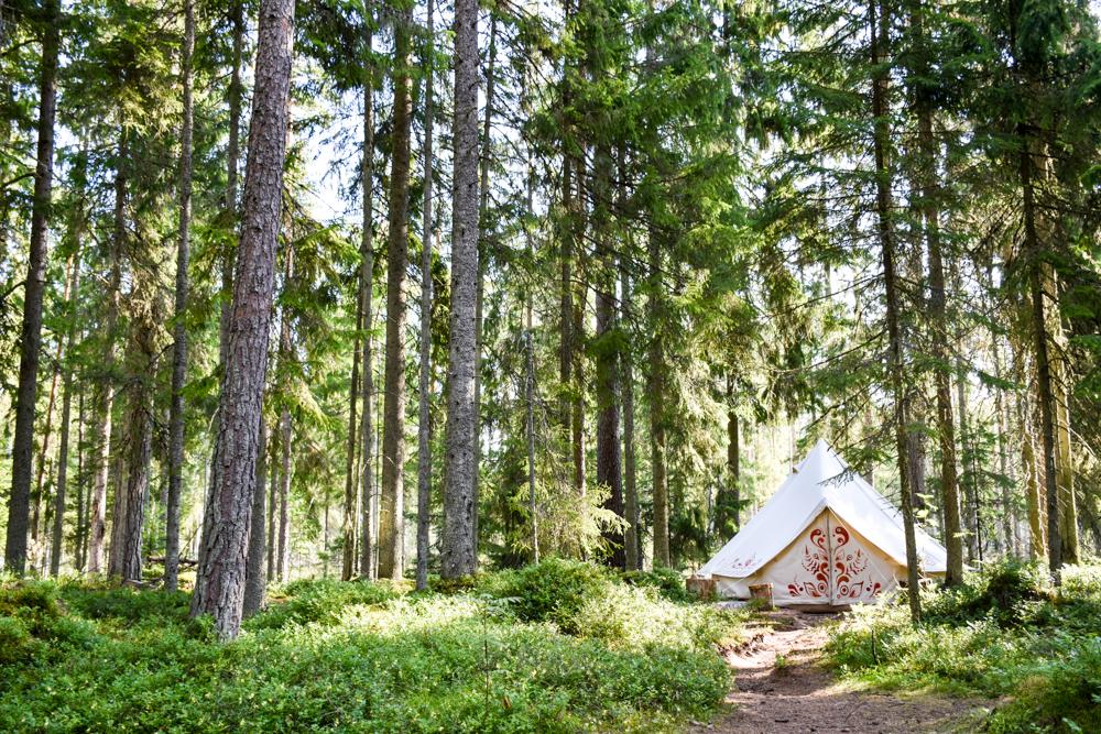 Estland Road Trip Reisetipps Route Highlights Schlafen im Nomadenzelt im Lahemaa Nationalpark