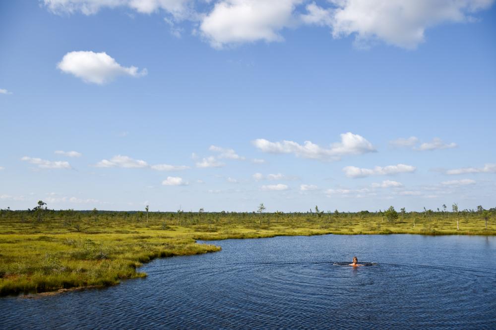 Estland Road Trip Reisetipps Route Highlights Schwimmen im Moorsee