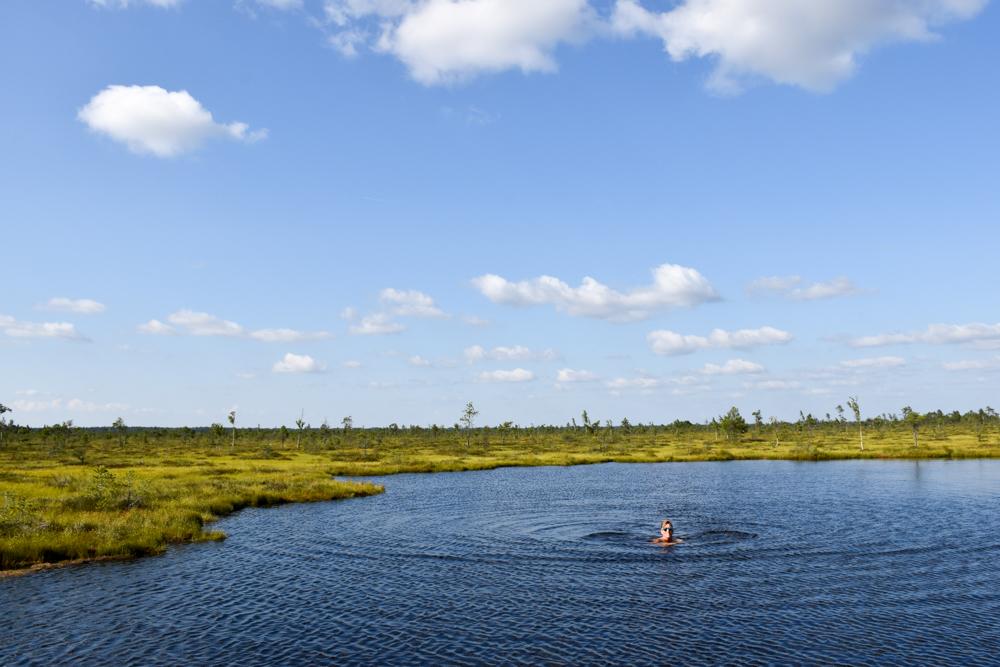 Estland Roadtrip: Reisetipps Route und Highlights unserer Rundreise