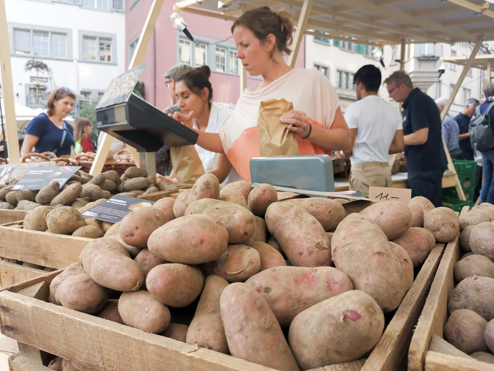 Unterkunft Rapperswil Schweiz Hotel Jakob Kartoffelmarkt