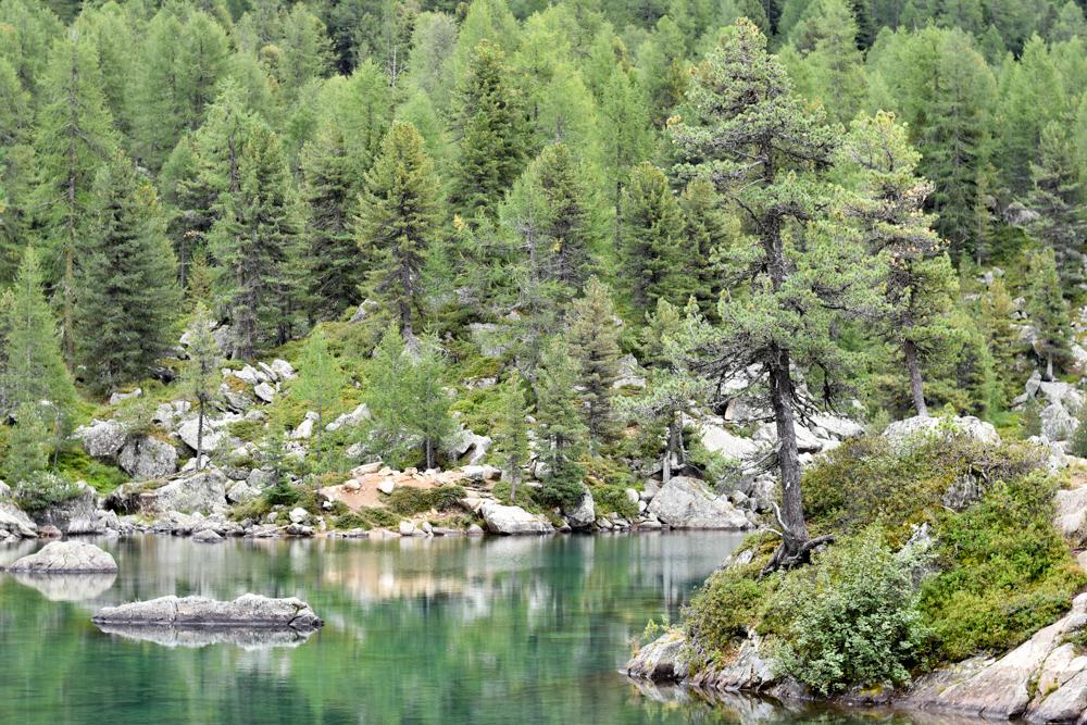 Weekend in der Valposchiavo Graubünden Schweiz Lieblingsplatz Saoseo See