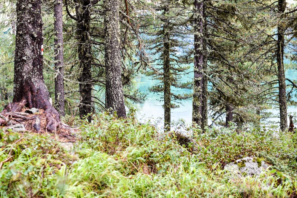 Weekend in der Valposchiavo Graubünden Schweiz Saoseo See