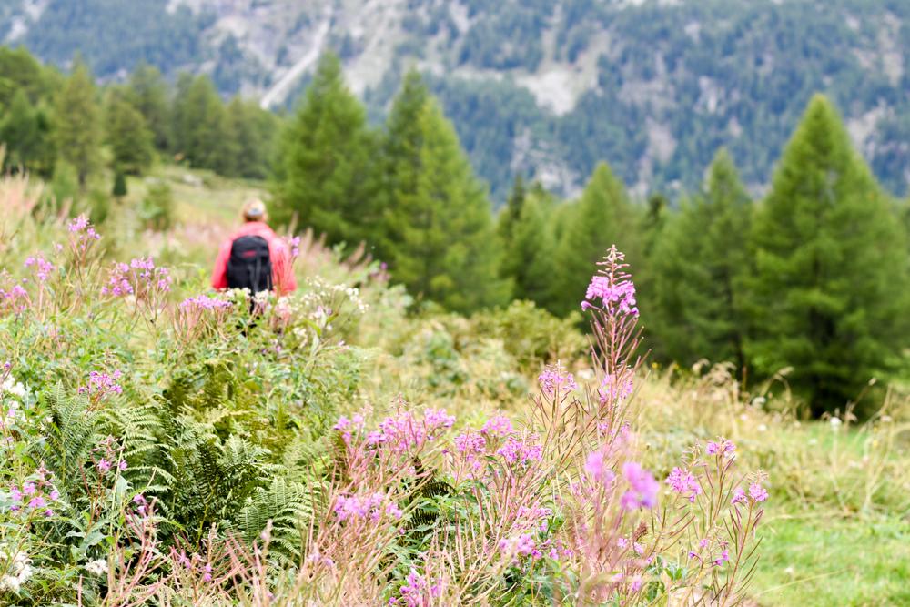 Weekend in der Valposchiavo Graubünden Schweiz tolle Natur im Val di Campo