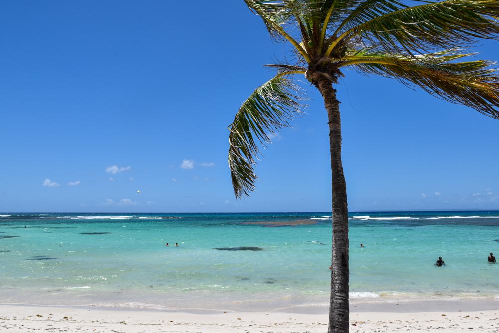 Guadeloupe Reisetipps: Die besten Sehenswürdigkeiten und Highlights der Karibikinsel