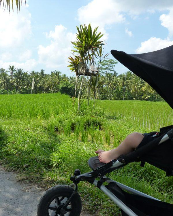Bali mit Kleinkind: Ein tropisches Paradies für kleine Kinder