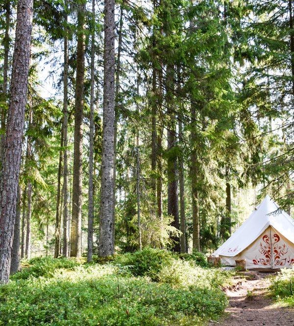 Glamping Estland: Im Nomadenzelt übernachten im Lahemaa Nationalpark