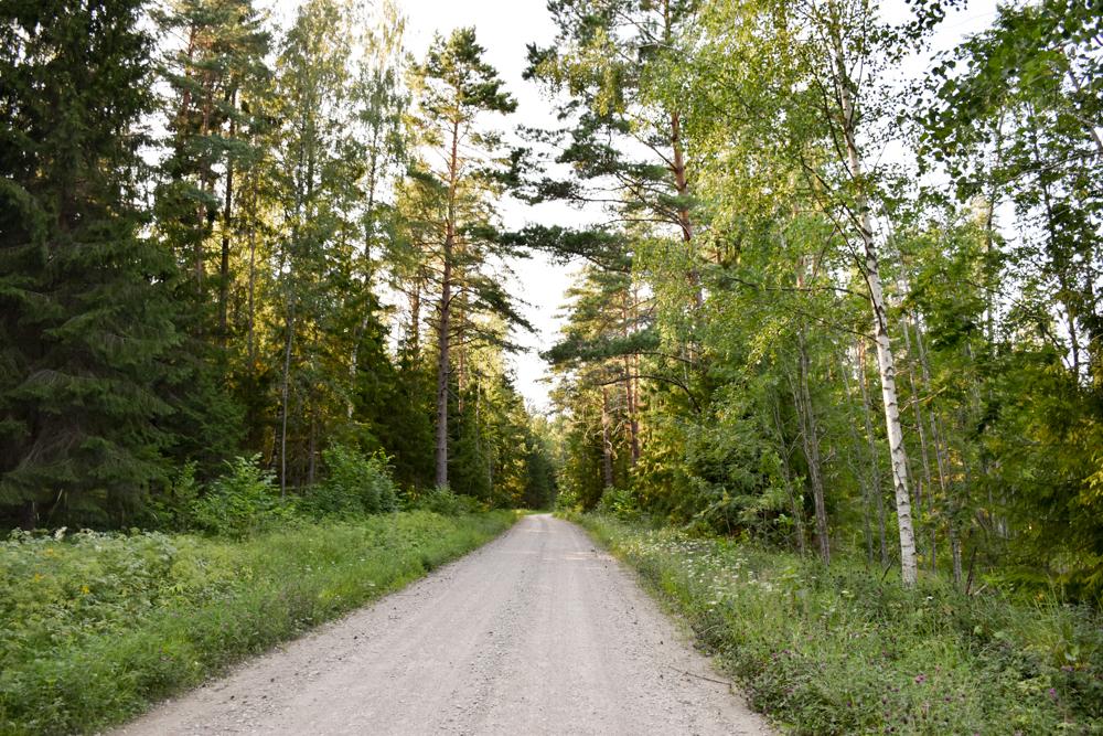 Glamping Lahemaa Nationalpark Estland Projekt Kodu Anfahrtsweg
