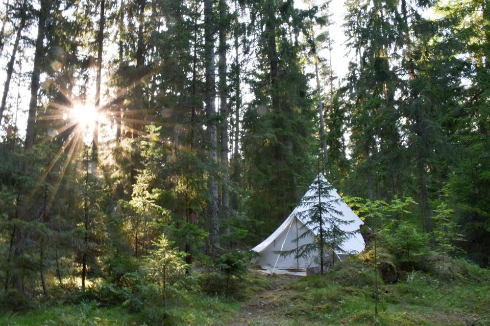 Glamping Lahemaa Nationalpark Estland Projekt Kodu unser Zelt mitten im Wald