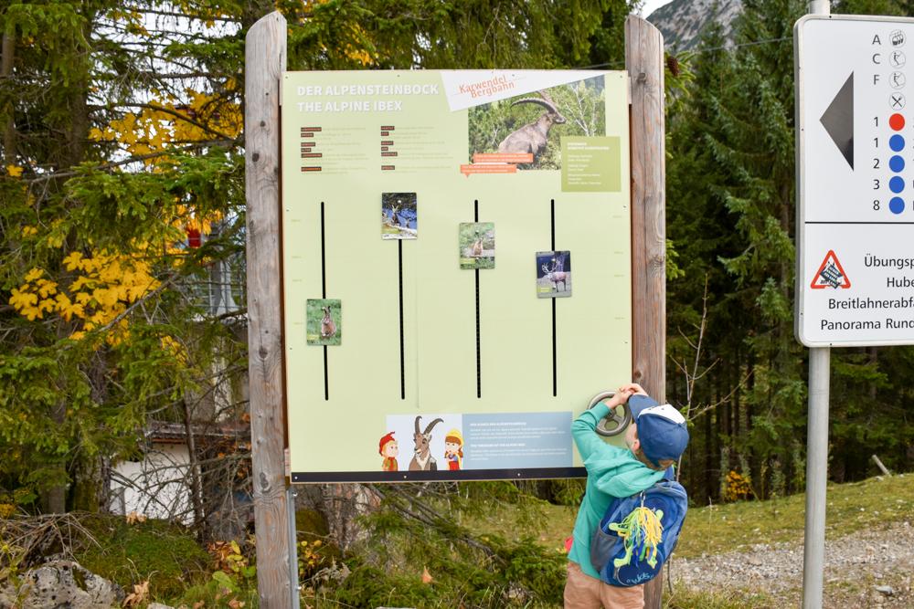 Herbstferien Achensee Tirol Österreich mit Kindern Erlebnisstation Alpentiere Rundweg