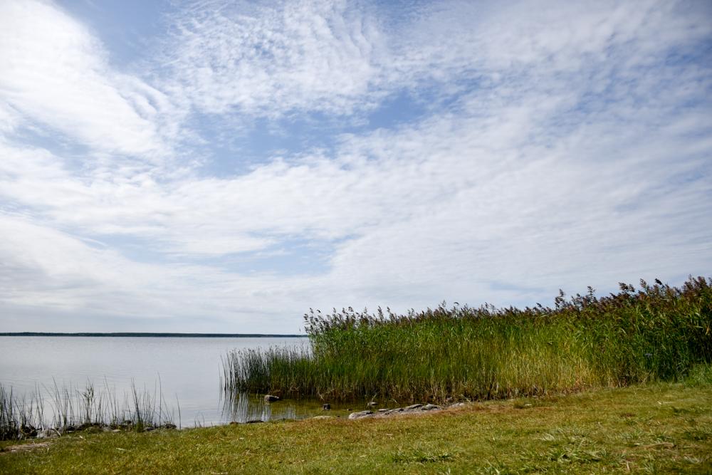 Insel Muhu Estland Badestrand