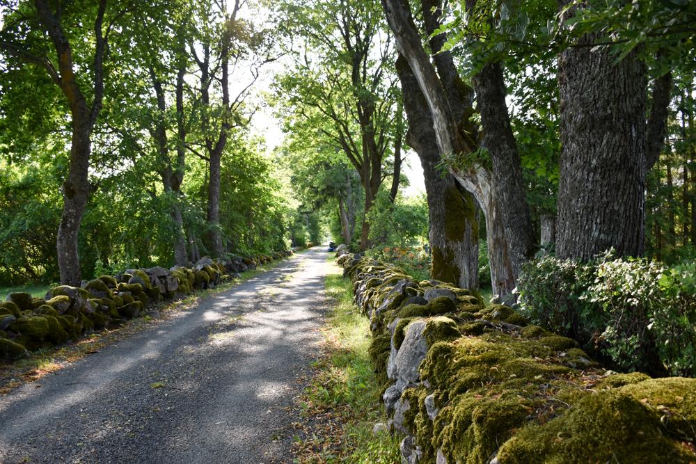 Insel Muhu Estland Strasse auf Muhu