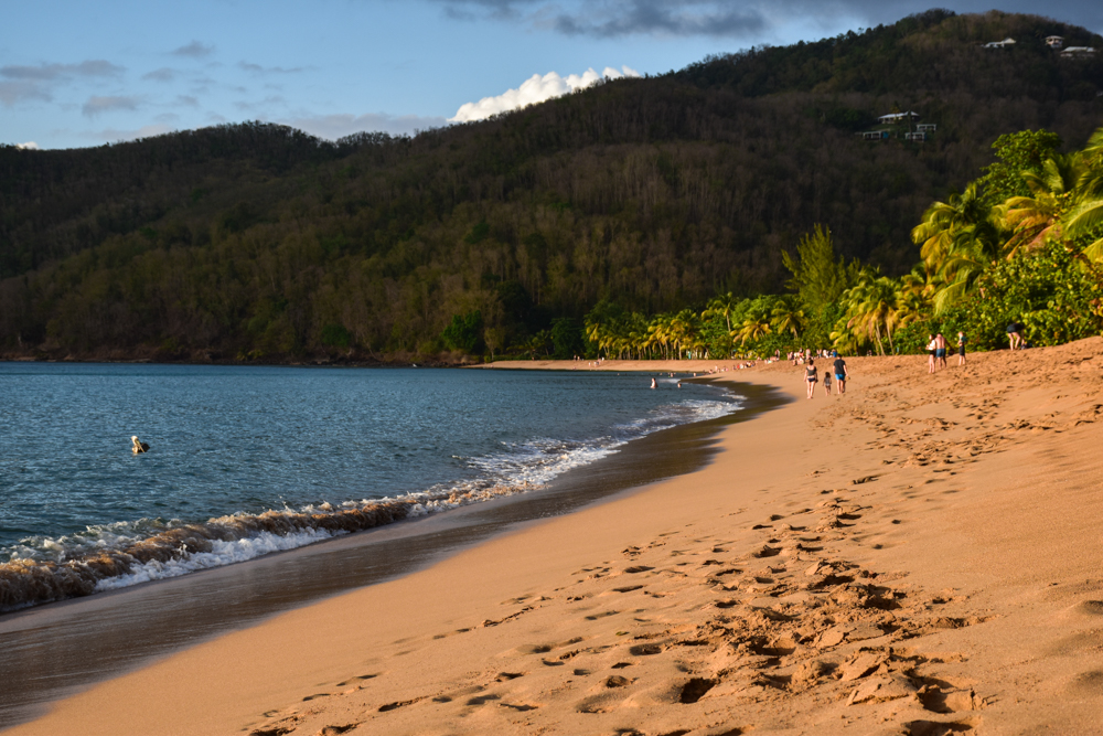 Strand-Guide Guadeloupe Plage Grande Anse in Deshaies