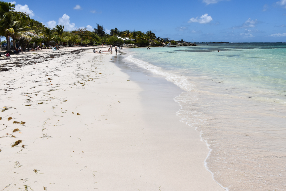 Strand-Guide Guadeloupe Plage Raisins Clairs Saint-Francois