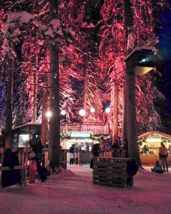 Magischer Winterausflug in den Zauberwald Lenzerheide