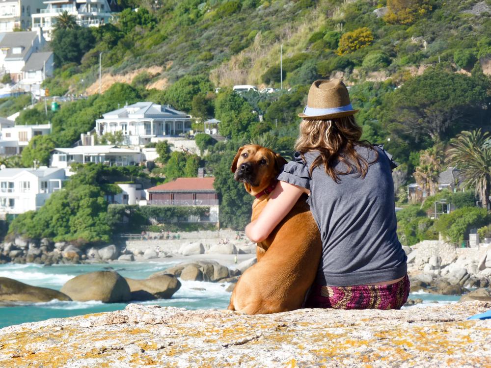 Auswanderung nach Südafrika Travel Sisi mit Hund Tequila in Clifton