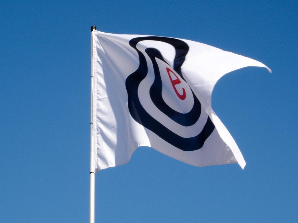 Auswanderung nach Südafrika elements Fahne