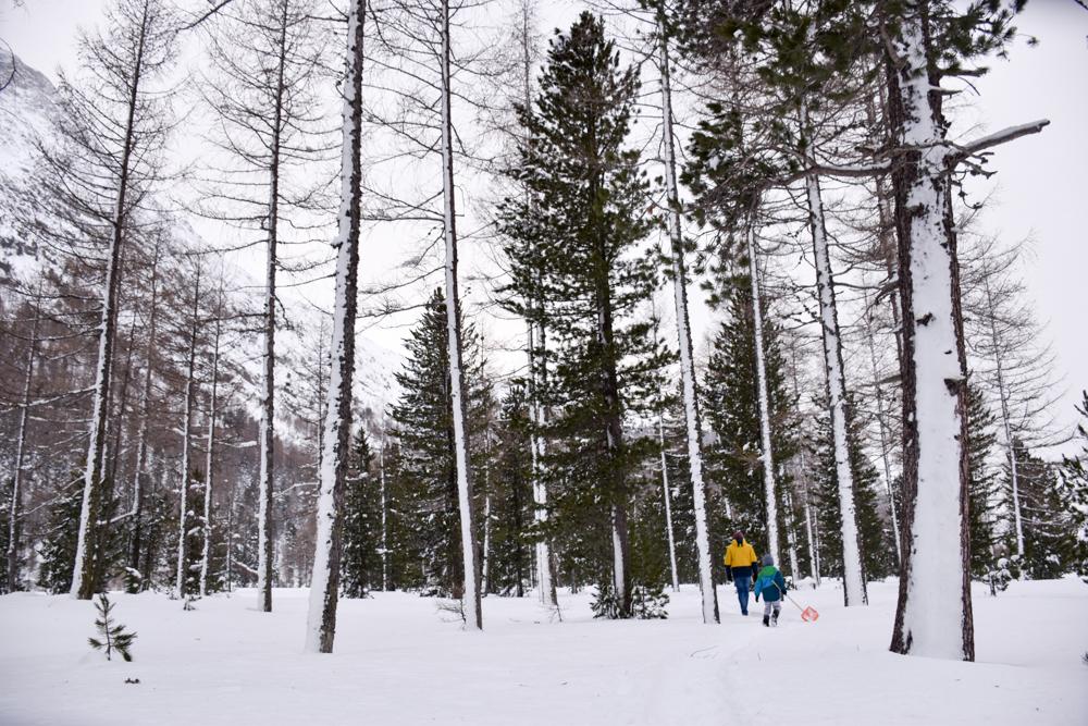 Winter Glamping Campingplatz Morteratsch Engadin Graubünden Schweiz Umgebung erkunden