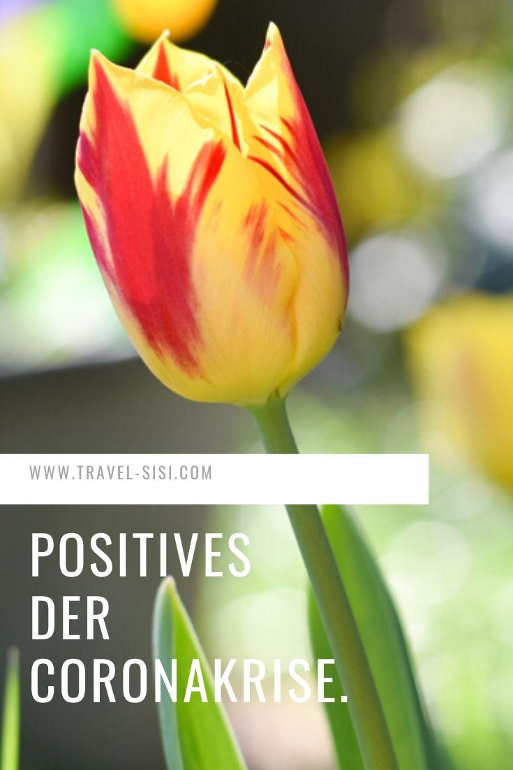 Positives der Coronakrise