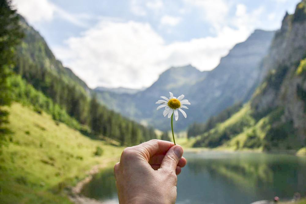 Der schönste Schweizer See – Meine persönlichen Favoriten