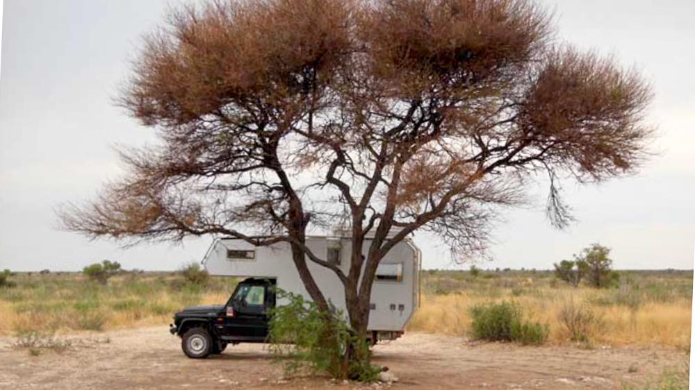 Weltreise im Camper Weg auf Zeit Botswana