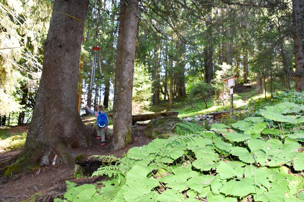 Ausflugstipp Zwergenweg Klosters Graubünden Schweiz Feenwiese