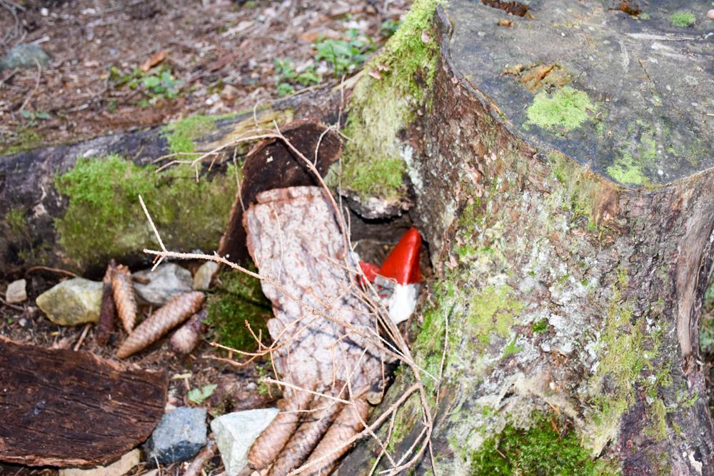 Ausflugstipp Zwergenweg Klosters Graubünden Schweiz versteckte kleine Zwerge