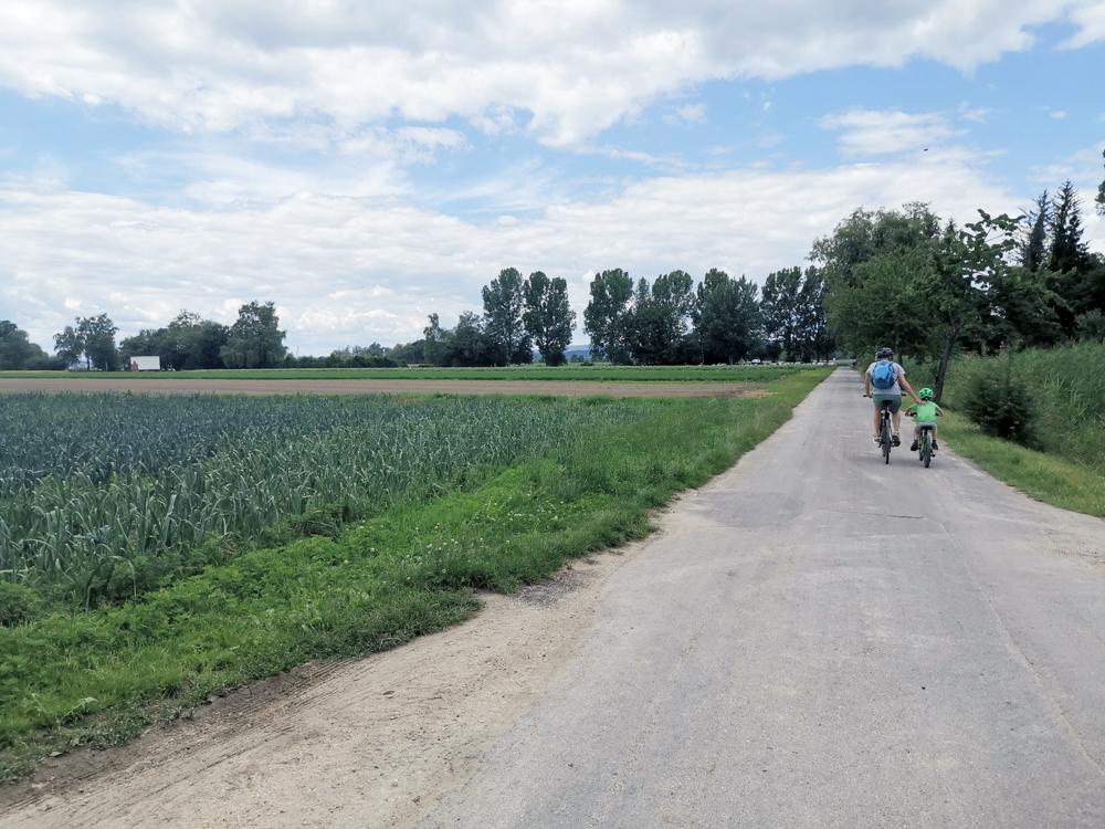 Familienfreundliche Fahrradtour Thurgau Bodensee Gemüsefelder zwischen Kreuzlingen und Gottlieben