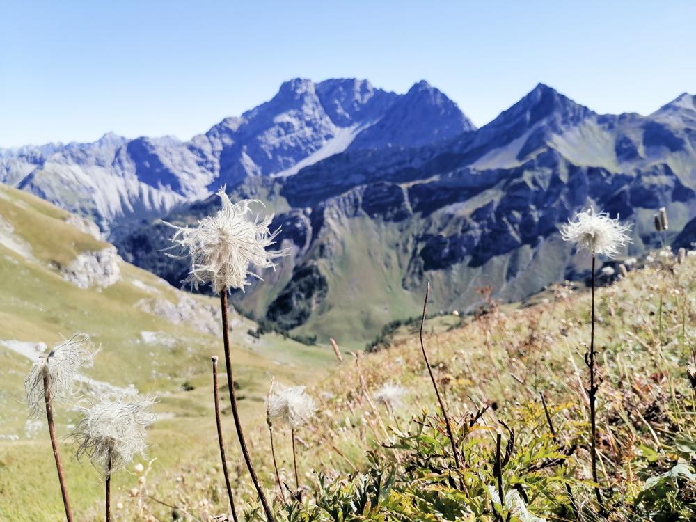 Wanderung Liechtenstein Fürstin-Gina-Weg Pfälzerhütte Bergglück