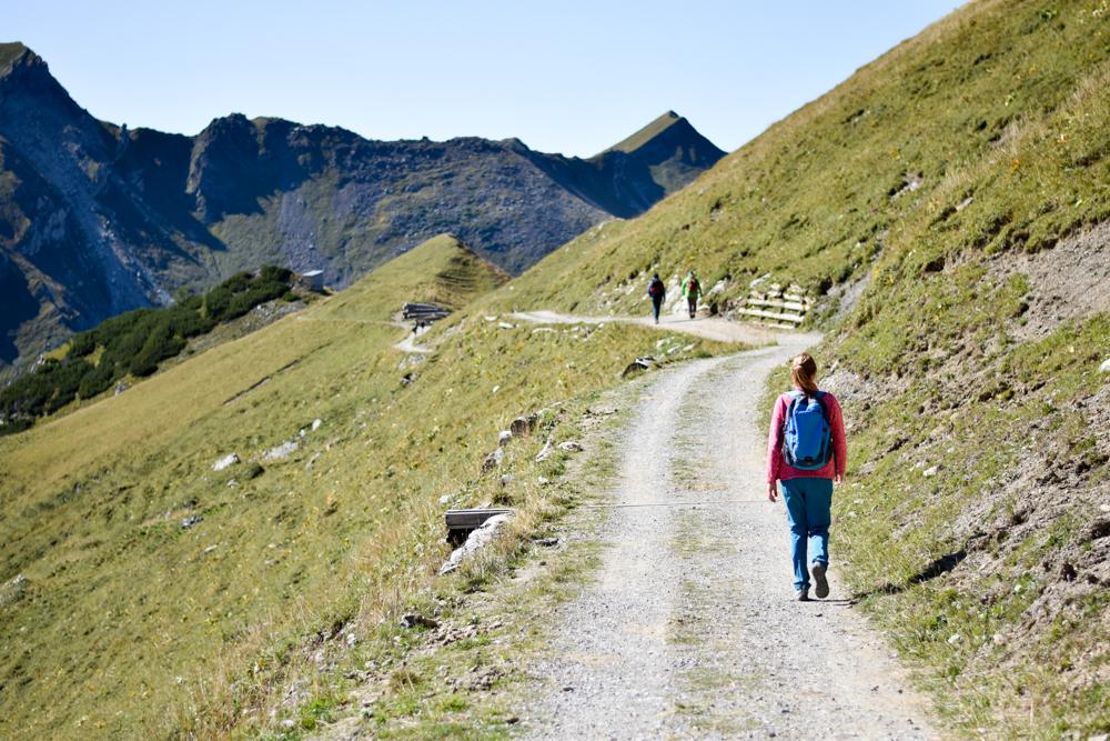 Wanderung Liechtenstein Fürstin-Gina-Weg Pfälzerhütte breiter Weg zur Alp Gritsch