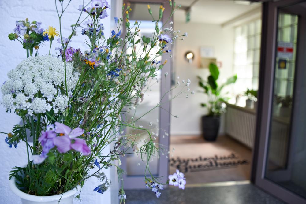 Unterkunft Weggis Vierwaldstättersee Schweiz Wanderlust Guesthouse frische Blumen am Eingang