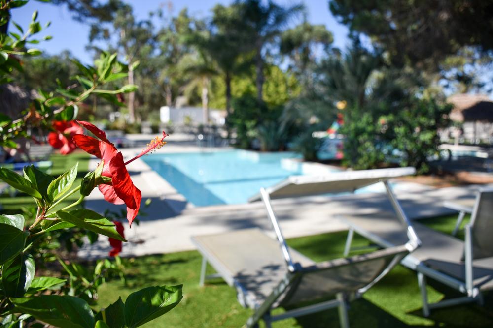 Camping Rundreise Korsika Pool Campingplatz Marina d'Aleria