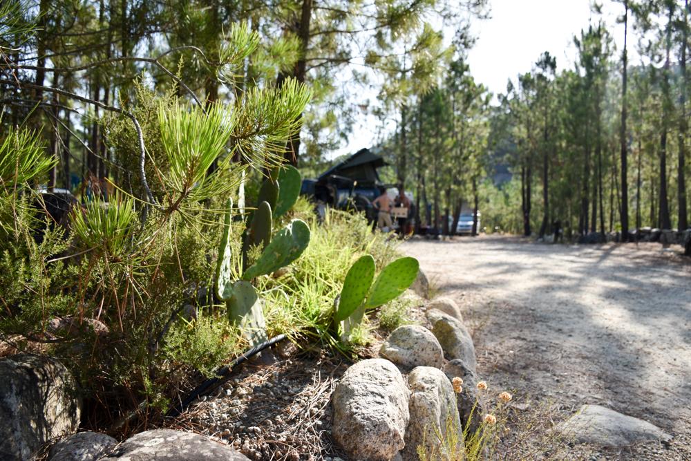 Camping Rundreise Korsika tolle Stellplätze Campingplatz Merendella