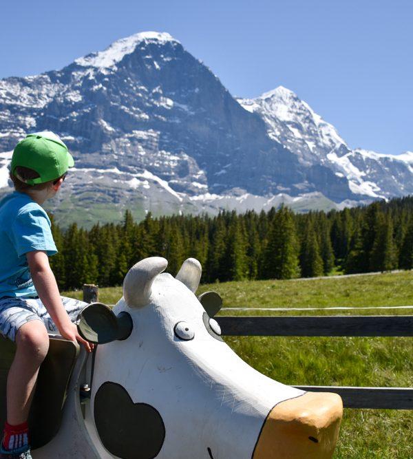 Ausflugstipp Männlichen Grindelwald – Spass für die ganze Familie auf dem Lieselotteweg