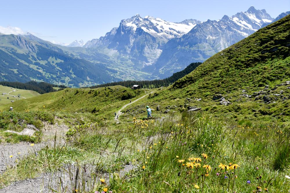 Familienausflug Lieselotteweg Männlichen Grindelwald Berner Oberland Schweiz topmotivierter kleiner Wanderer