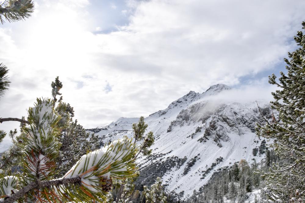 Familienwochenende Schweizerischer Nationalpark Engadin Graubünden Schweiz Schnee Ofenpass Val Müstair